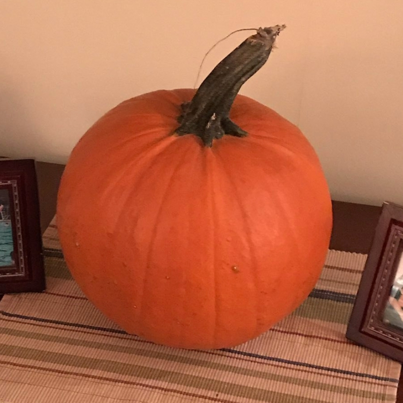 Our First Pumpkin